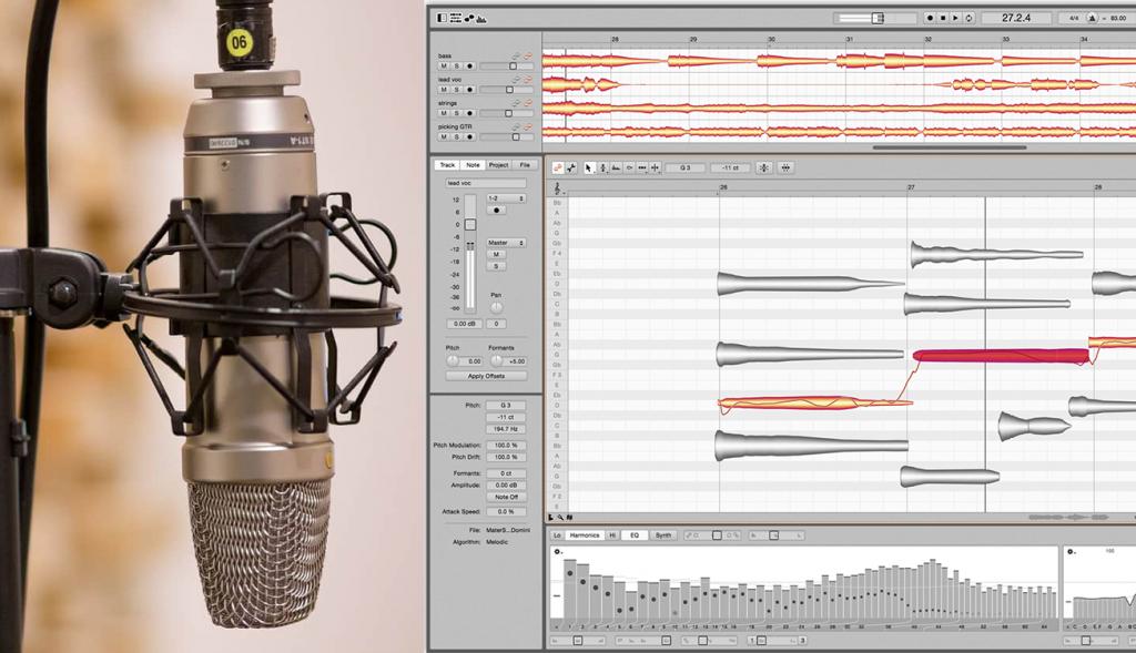 Gesang aufnehmen und bearbeiten - Ulanda